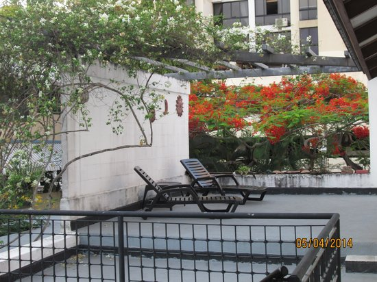 Hostal Entre 2 Aguas: roof top patio garden