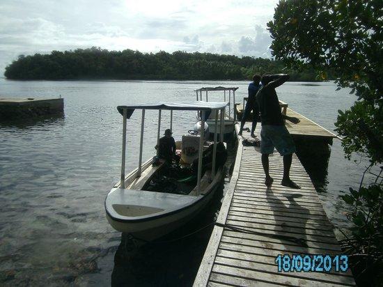 Uepi Island Resort: Dive Jetty