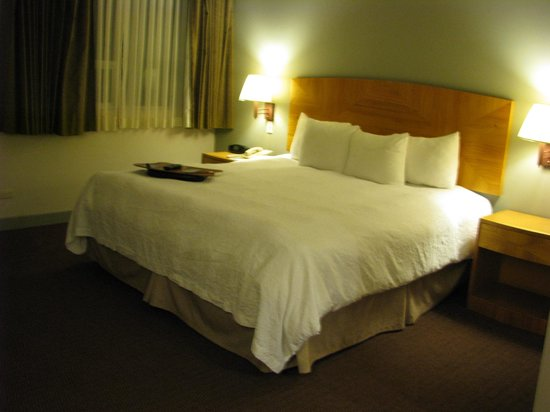 Hampton Inn by Hilton Guayaquil-Downtown: Bed