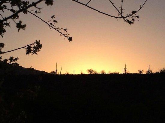 Westin La Paloma Resort and Spa: sunrise