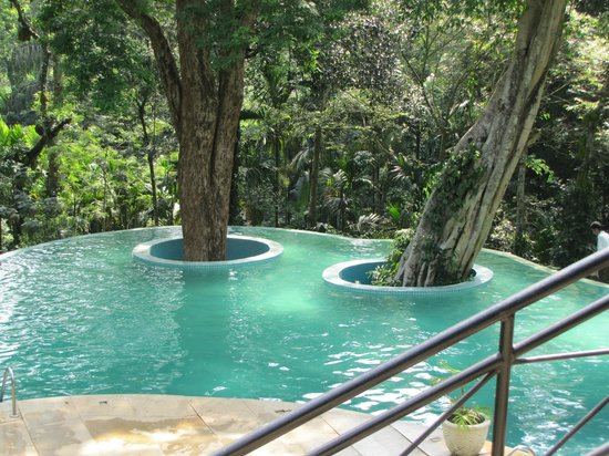 The Windflower Resort and Spa, Coorg: Swimming Poll