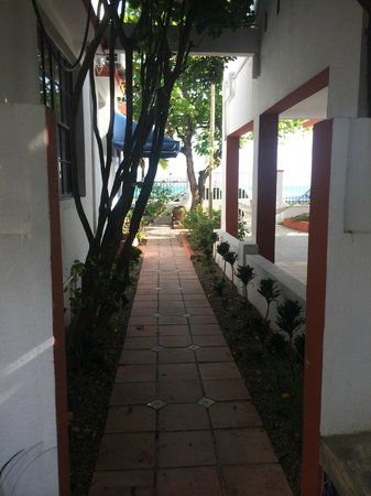 Tres Palmas Inn: One of the walkways to the room.