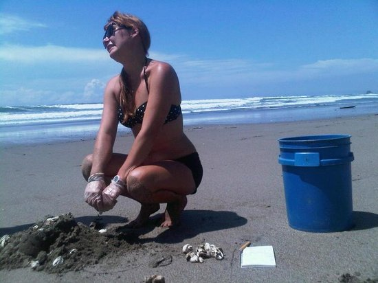 Cristal Azul: Tours with Sea Turtles Volunteers