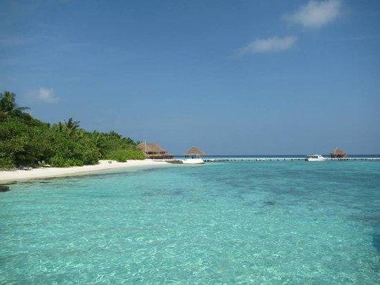 Eriyadu Island Resort : Il pontile d'arrivo