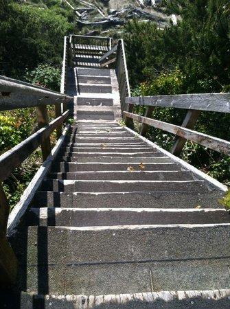 Ocean Terrace Condominium Suites: staircase down to beach