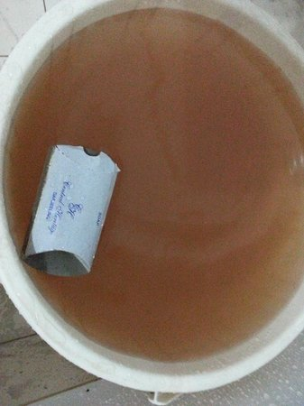 Central Heritage Resort and Spa, Darjeeling: Disgusting Brown water from the tap (2)!