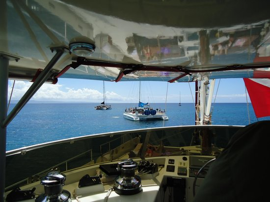Hula Girl Excursions: View from the top deck
