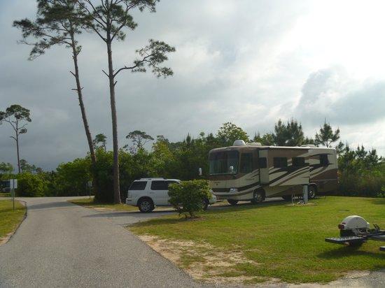Gulf State Park Campground : Campsite
