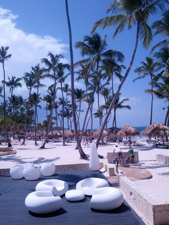 Melia Caribe Tropical: View from breakfast...