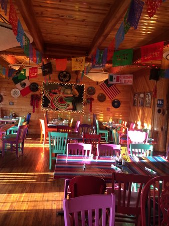 Sophie's Mexican Kitchen: Festive atmosphere