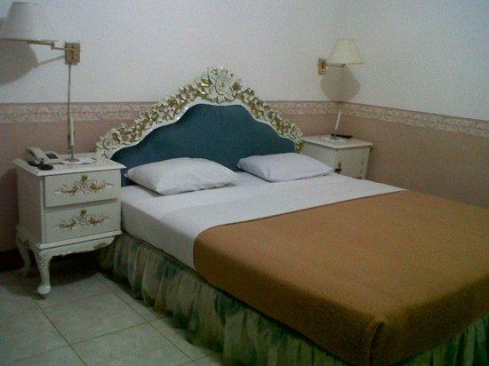 Toraja Prince Hotel: Double bed room