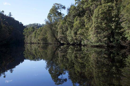 Pieman river, Corinna