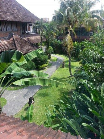 Sri Bungalows: From my window.