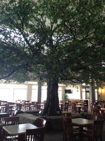 Sauder Heritage Inn : Breakfast area around the pretty tree
