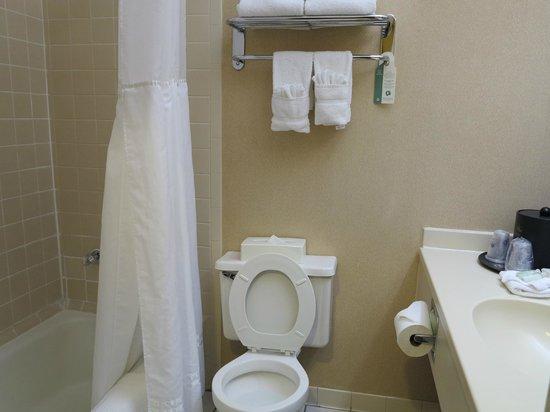 BEST WESTERN PLUS Cary Inn - NC State: Bathroom