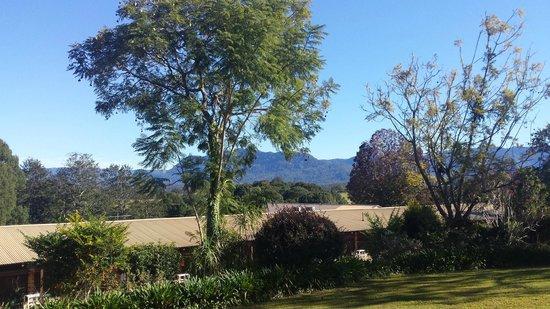 Bellingen Valley Lodge : Deluxe Suite - View