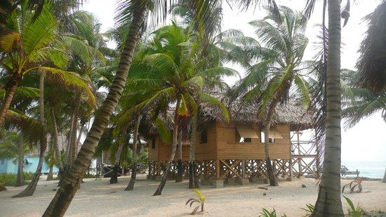 Long Caye Resort: outside view of cabanas 1-3