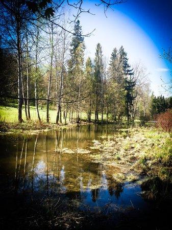 Abramtsevo, Rusia: Парк при усадьбе Абрамцево