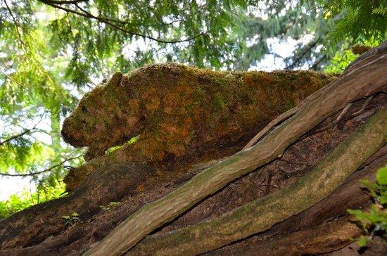 The Butchart Gardens : Hidden Animals