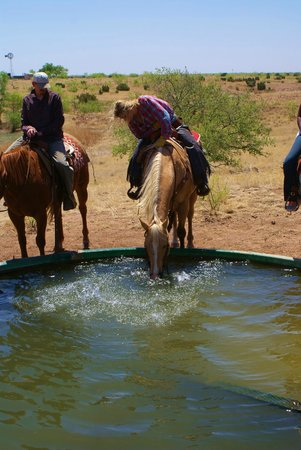 Cowgirls and Cowboys in the West: watering the horses