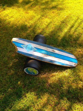 Swell Surf Camp: Indo board-test your balance on this!