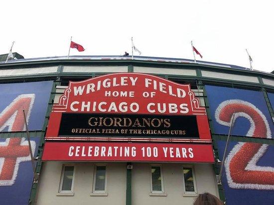 Wrigley Field : 100 Years at Wrigley!