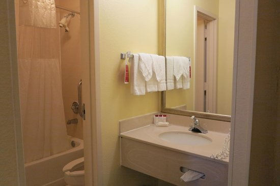 Ramada Orlando Near Convention Center : Bathroom & sink