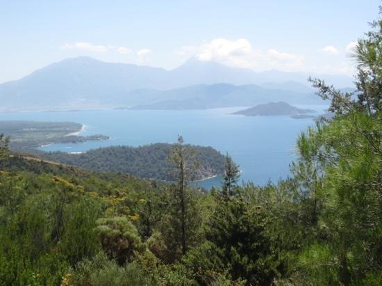 Villa Daffodil: area around Fethiyue