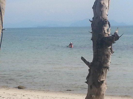 Waimarie: Beach area out toward pier