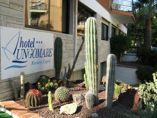 Hotel Lungomare: перед входом в отель Лунгомаре