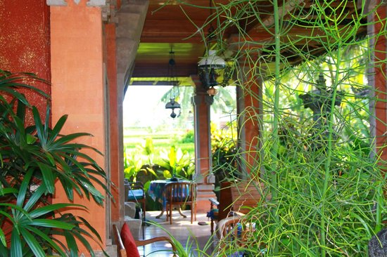 Nirwa Ubud Homestay : Jardin exotique