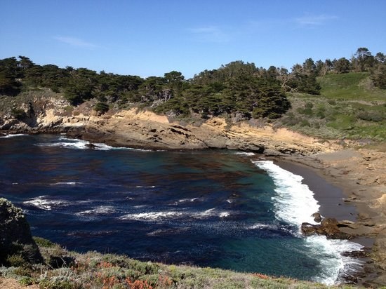 Point Lobos State Reserve: Along one of the whale cove trail