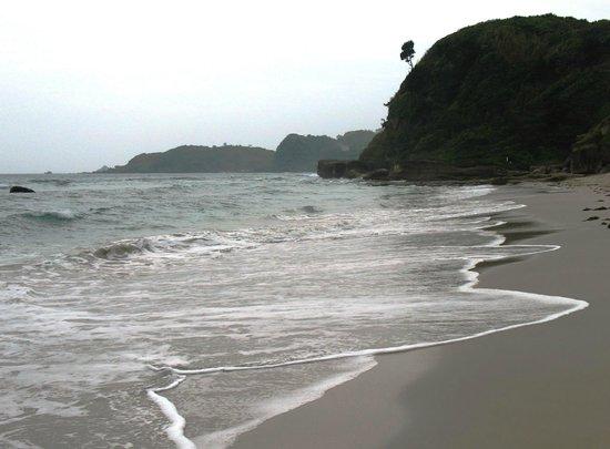 Shimoda Prince Hotel: Пляж