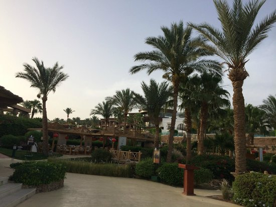 The Royal Savoy Sharm El Sheikh: vista dalla camera