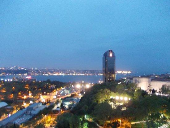 Hilton Istanbul Bosphorus: Hilton room view