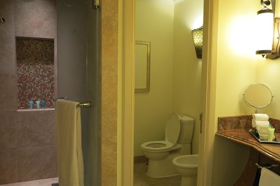 Atlantis, The Palm: Bathroom
