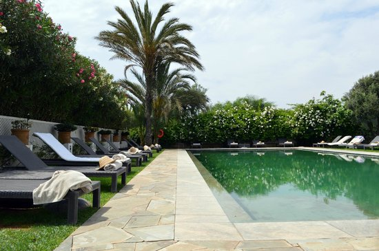 Riad Villa Blanche : The pool