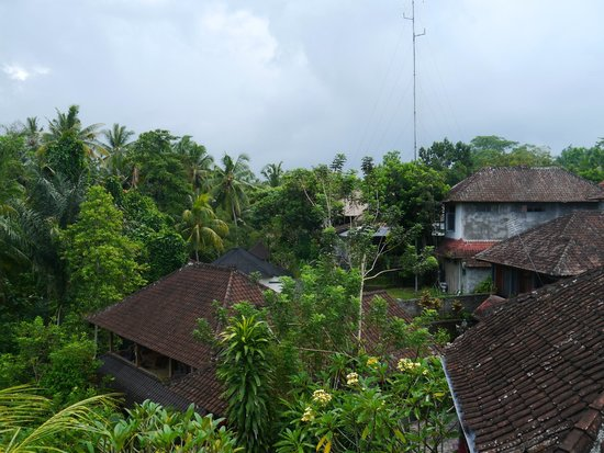 Kajeng Bungalows: view from the high rooms
