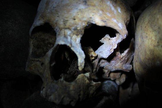 The Catacombs: catacombs Paris
