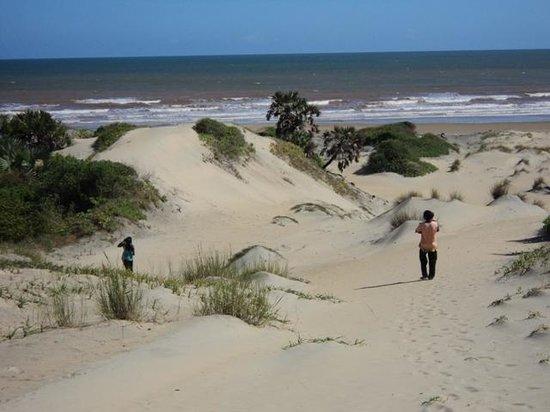 H12 Delta Dunes Lodge: Sand Dunes