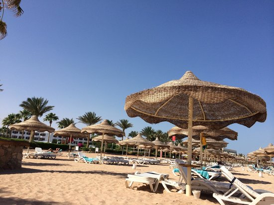 Baron Resort Sharm El Sheikh: Good Beach!