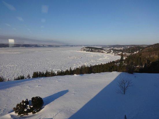 Auberge La Tourelle du Fjord : Vue du parc
