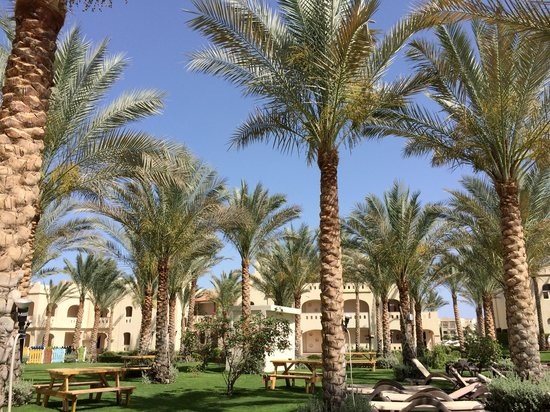 Rixos Sharm El Sheikh: Nice outdoor garden