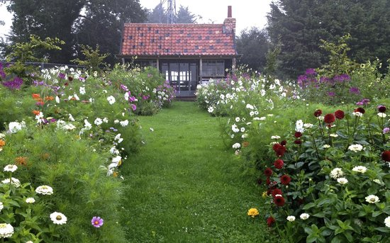 Darsham Nurseries Cafe: The Summer House