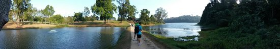 MacRitchie Nature Trail : reservior there