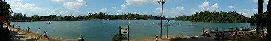 MacRitchie Nature Trail : nice reservior