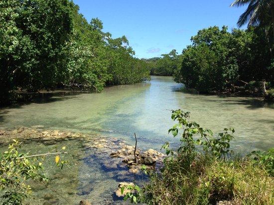 Aquana Beach Resort: Local freshwater spring next to resort