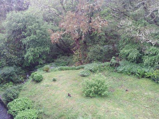 Abbeyglen Castle Hotel : Small waterfall in gardens