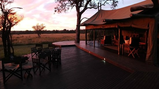 Rhino Walking Safaris at Plains Camp: the social area