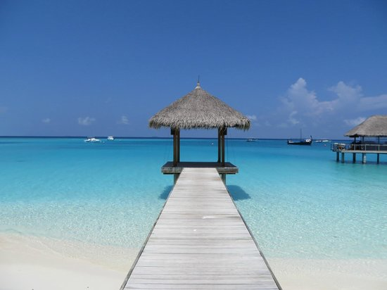Velassaru Maldives: Pavillion